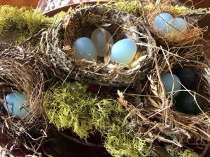 ostara eggs