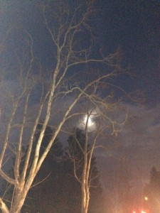 Winter Solstice Waxing Moon... bringing our dreams to fruition!