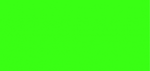 neon green color hex