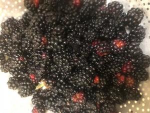 washed berries